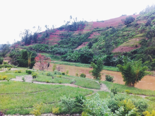 Nyabarongo River. En route from ngororero To Kigali.