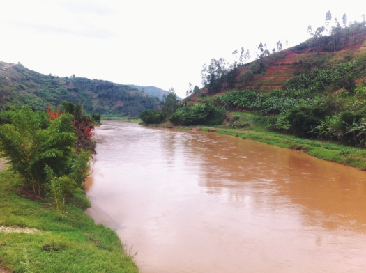 Nyabarongo River.